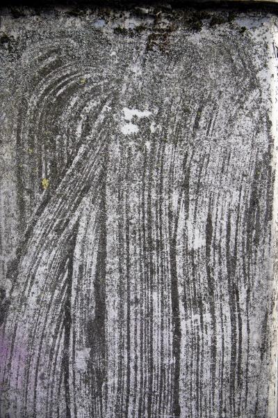 Ancient Fingerprint